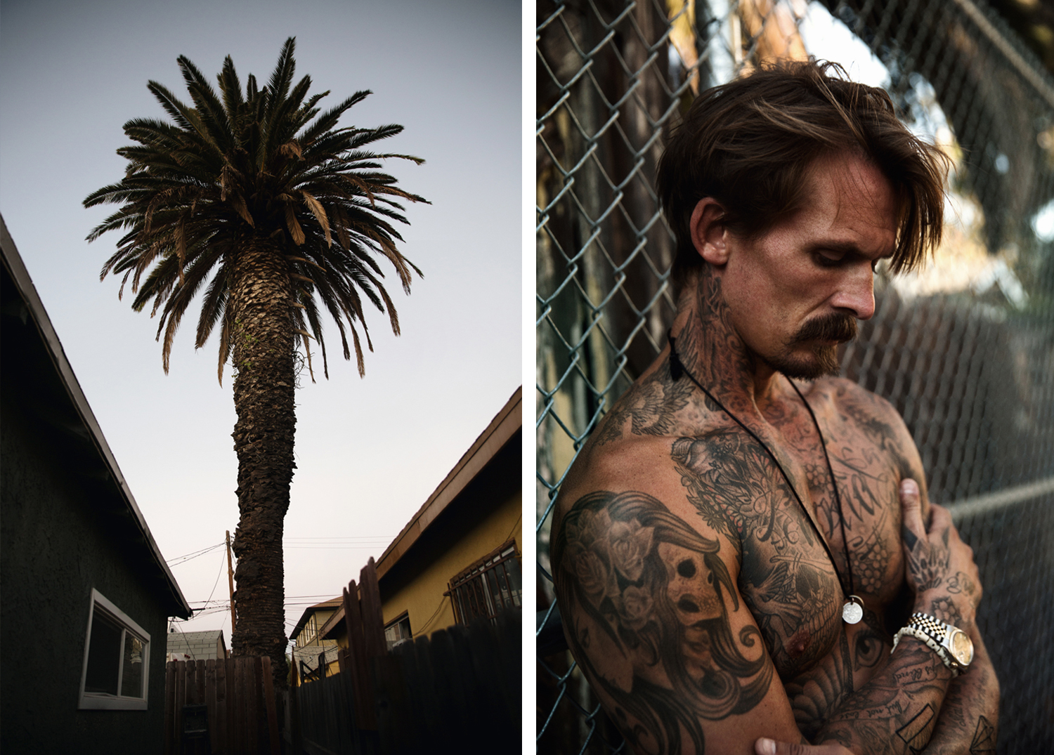 a picture of a palm tree next to a picture of a tattooed guy leaning agains a fence